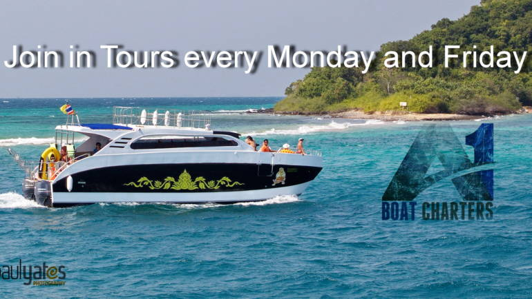 Island Tour Catamaran